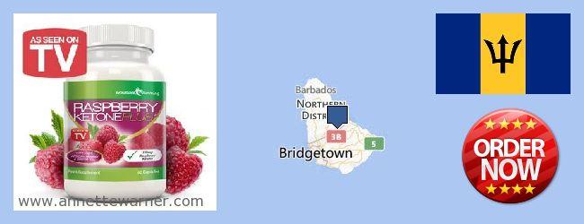 Where to Buy Raspberry Ketones online Barbados