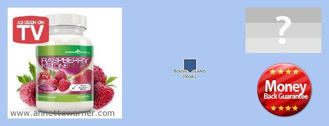 Where to Buy Raspberry Ketones online Bouvet Island
