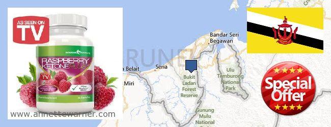 Purchase Raspberry Ketones online Brunei