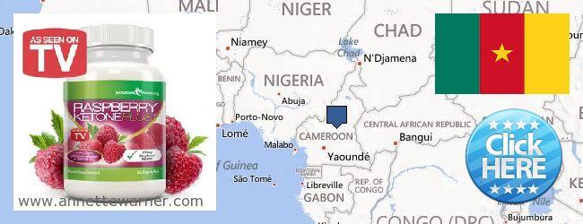 Where Can I Buy Raspberry Ketones online Cameroon