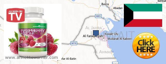 Where to Purchase Raspberry Ketones online Kuwait