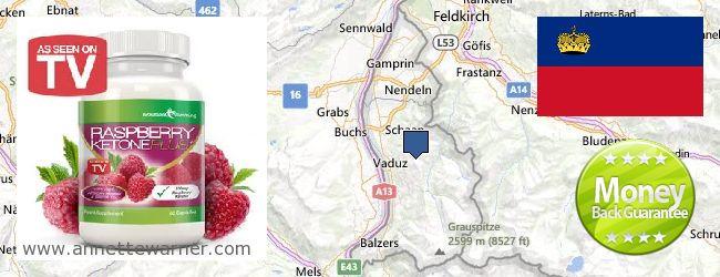 Where to Purchase Raspberry Ketones online Liechtenstein