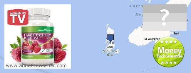 Where to Buy Raspberry Ketones online Saint Pierre And Miquelon