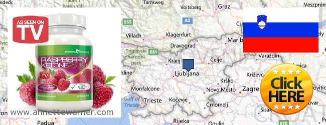 Where Can I Purchase Raspberry Ketones online Slovenia