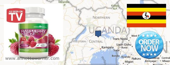 Buy Raspberry Ketones online Uganda