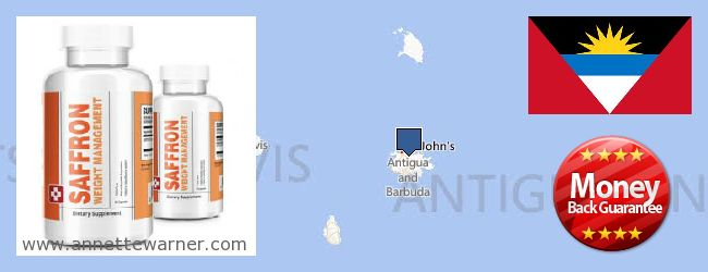 Where to Purchase Saffron Extract online Antigua And Barbuda