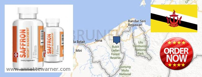 Where to Purchase Saffron Extract online Brunei