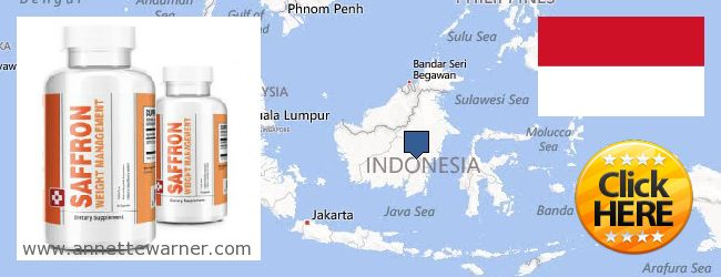 Purchase Saffron Extract online Indonesia