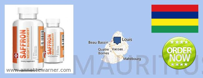 Where to Purchase Saffron Extract online Mauritius