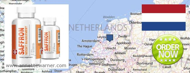 Where to Buy Saffron Extract online Netherlands