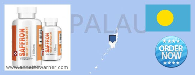 Where to Buy Saffron Extract online Palau