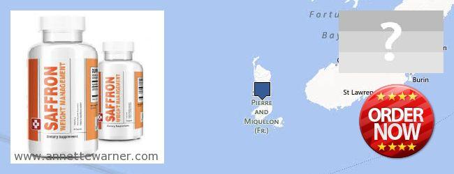 Best Place to Buy Saffron Extract online Saint Pierre And Miquelon