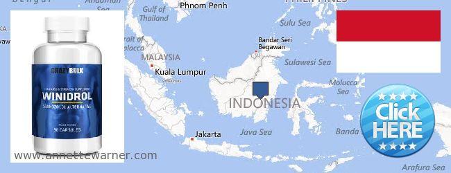 Buy Winstrol Steroid online Indonesia